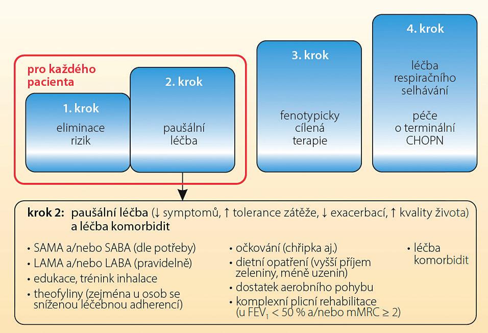 Paušální léčba CHOPN podle Českého doporučení diagnostiky a léčby stabilní CHOPN<sup>(11)</sup>