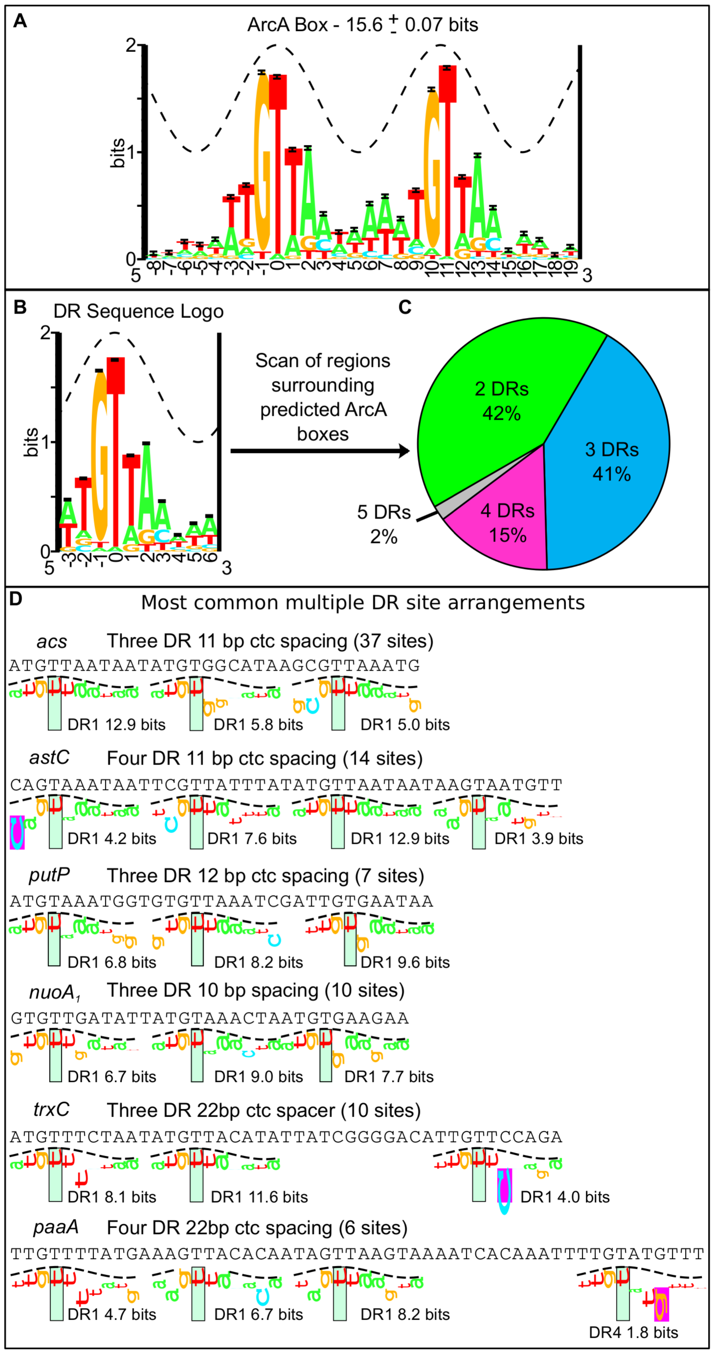 Bioinformatic analysis of the sequence regions bound by ArcA <i>in vivo</i>.