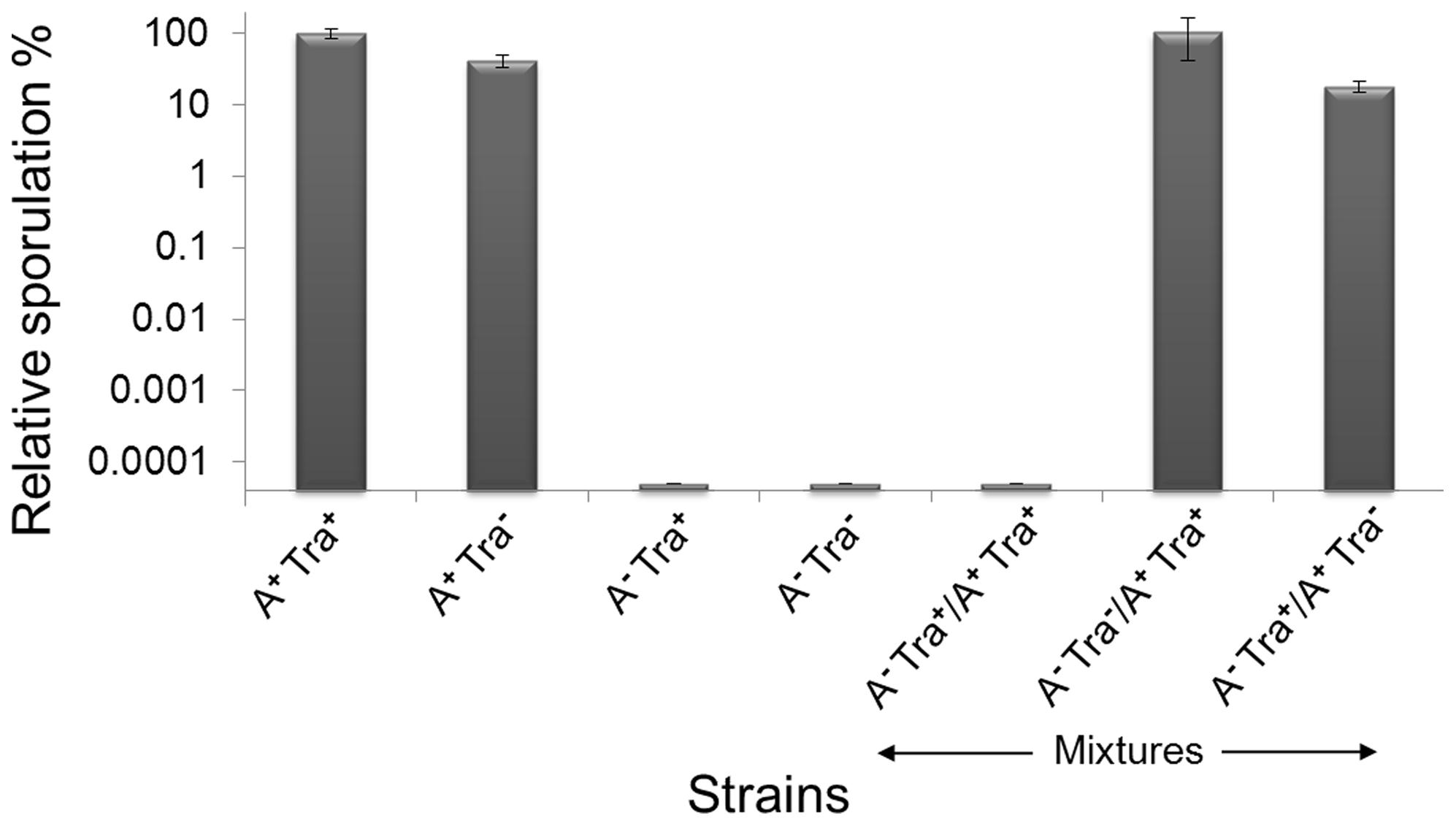 Outer membrane exchange regulates developmental sporulation.