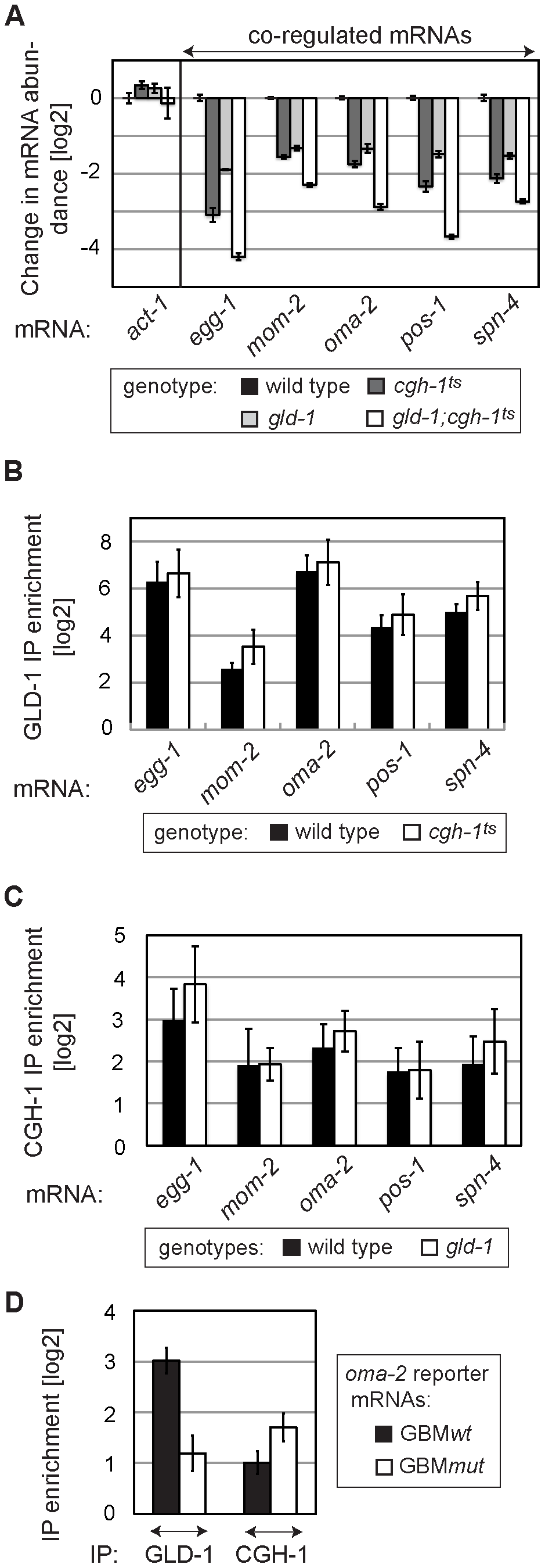 GLD-1 and CGH-1 stabilize mRNAs independently of each other.
