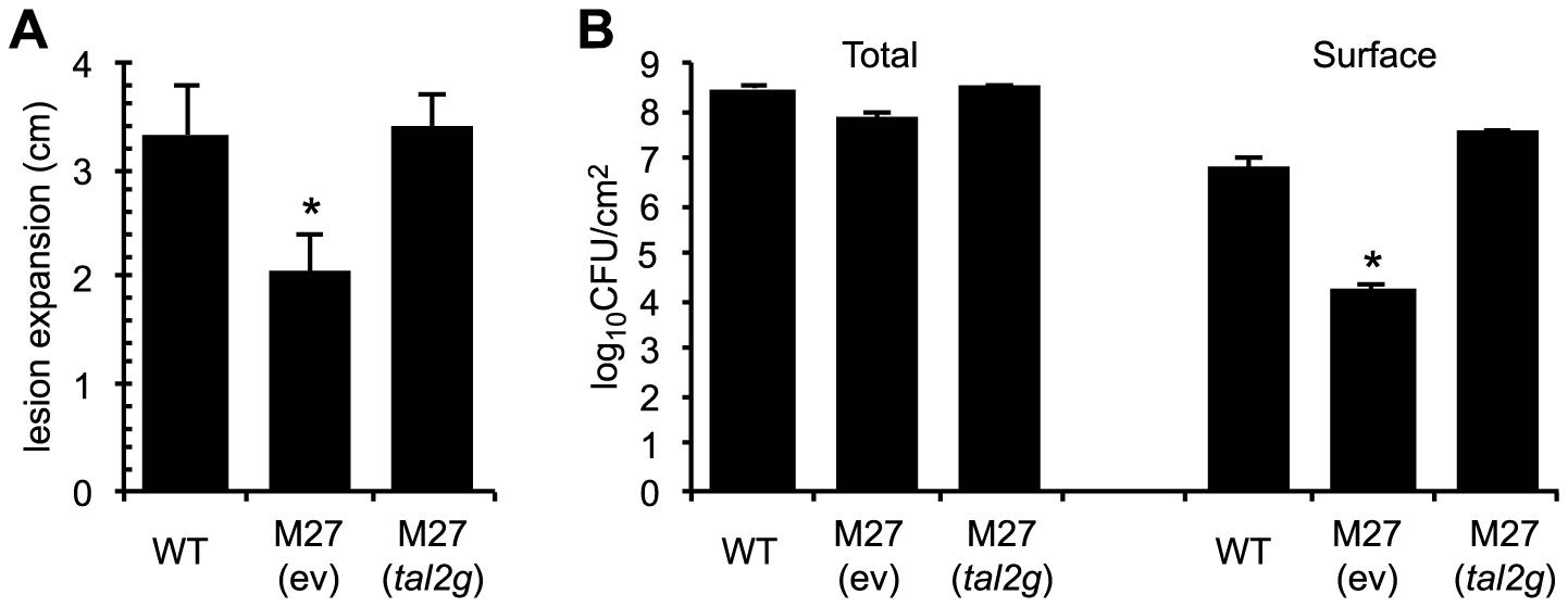 Virulence contribution of <i>X. oryzae</i> pv. oryzicola BLS256 TAL effector Tal2g.