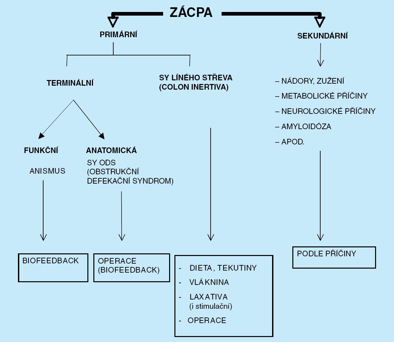 Klasifikace zácpy a principy léčby