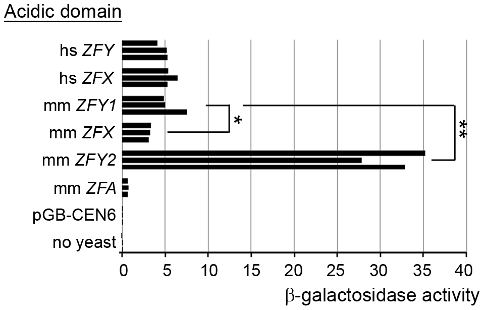 <i>Zfy2</i> acidic domain is a much more potent transactivator than other <i>'Zf'</i> acidic domains.