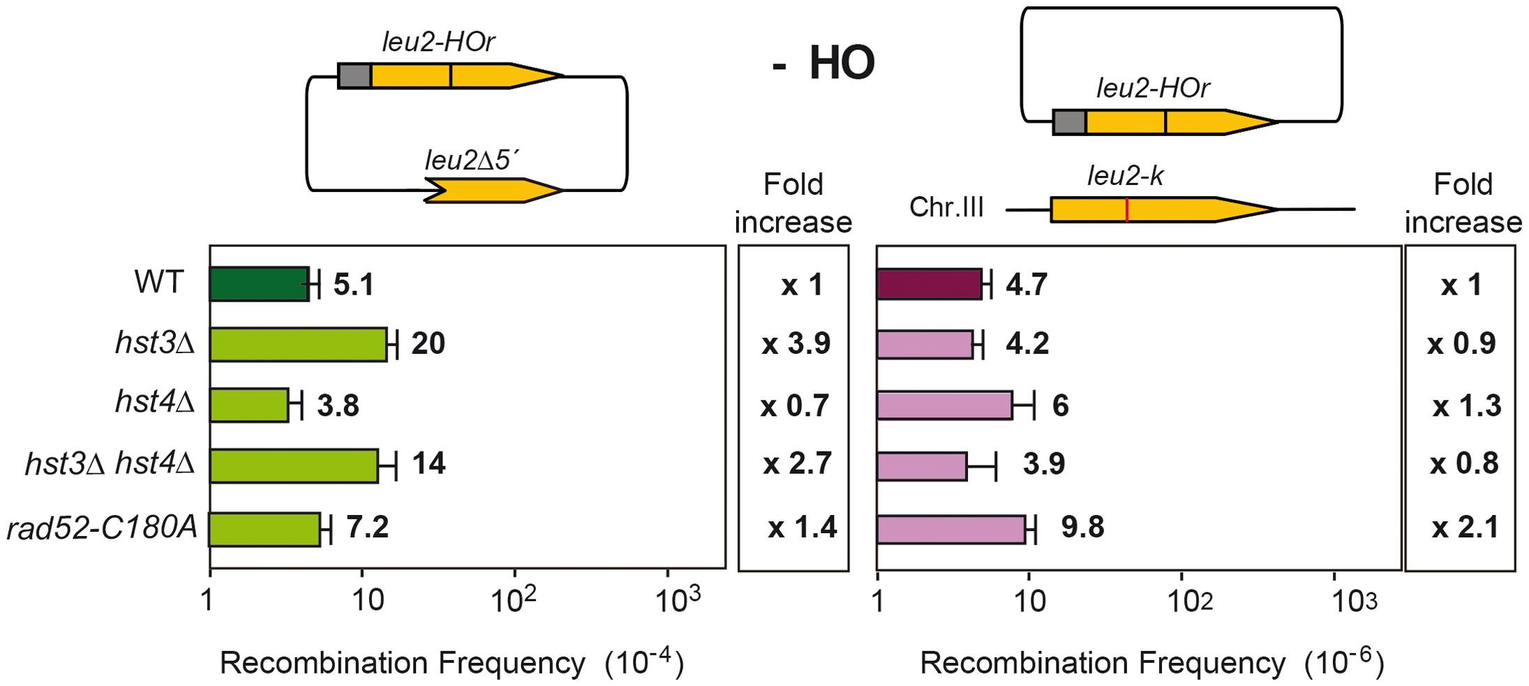 Effect of changes in the state of H3K56 acetylation on spontaneous recombination.