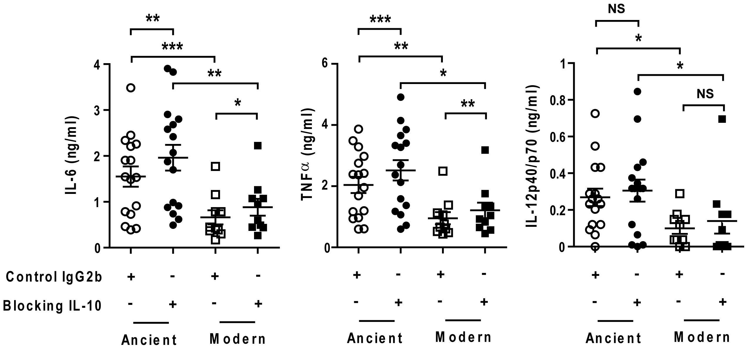 The delayed inflammatory response of modern lineage is not due to IL-10.