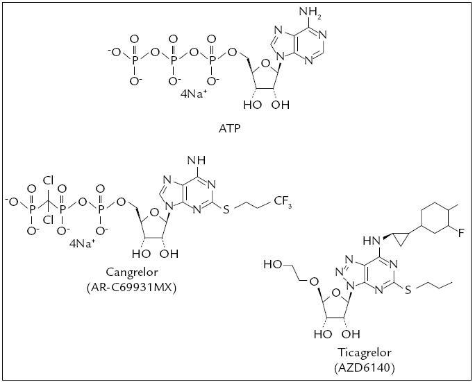 Cangrelor a Ticagrelor, chemická struktura.