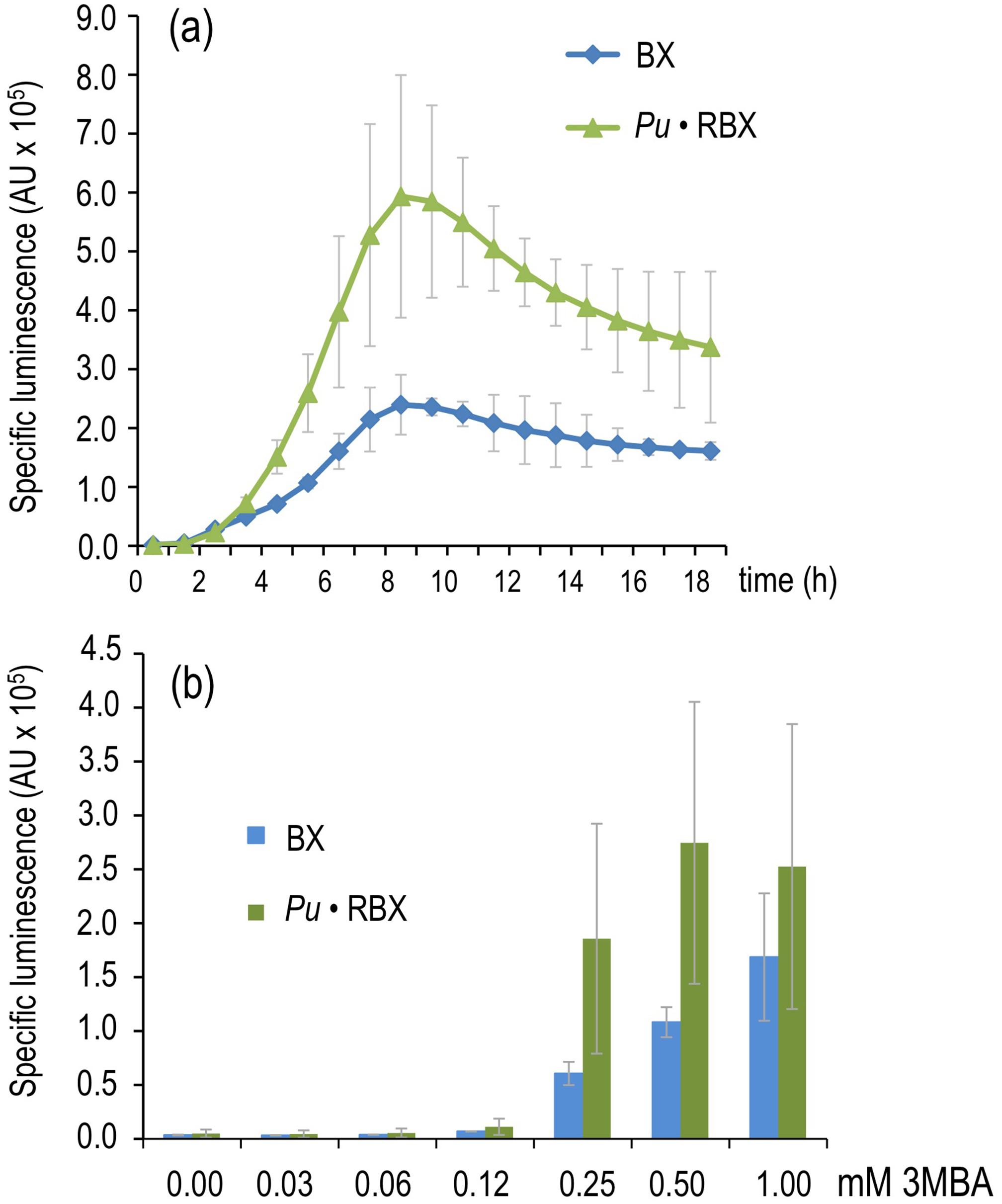 Effector sensitivity of strains expressing <i>xylR</i> through a negative or positive feedback loop.