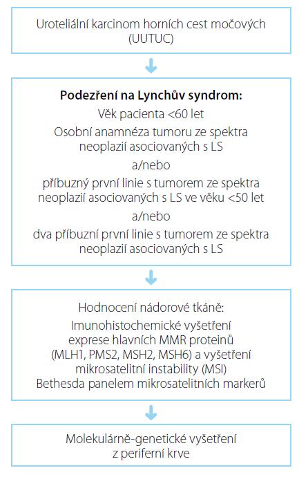 Diagnostický algoritmus při podezření na LS Fig. 1. Diagnostic algorithm in case of LS suspicion