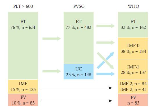 Rozdíl v posouzení Ph– MPO-T podle kritérií PVSG a WHO. Klasifikace 839 pacientů s trombocytemiemi s počty destiček (PLT) > 600 × 10<sup>9</sup>/l podle Thieleho a Kvasnicky [12]. UC: neklasifikovatelné MPO. IMF-0 až 3 znamenají grading fibrózy dřeně: IMF-0: nepřítomna; IMF-1: mírná retikulární; IMF-2: značná retikulární a ev. mírná kolagenní; IMF-3: pokročilá kolagenní fibróza. Podle Michielse [15]; ve stadiu IMF > 3 (osteoskleróza s hypocelularitou dřeně) nebývá trombocytemie.