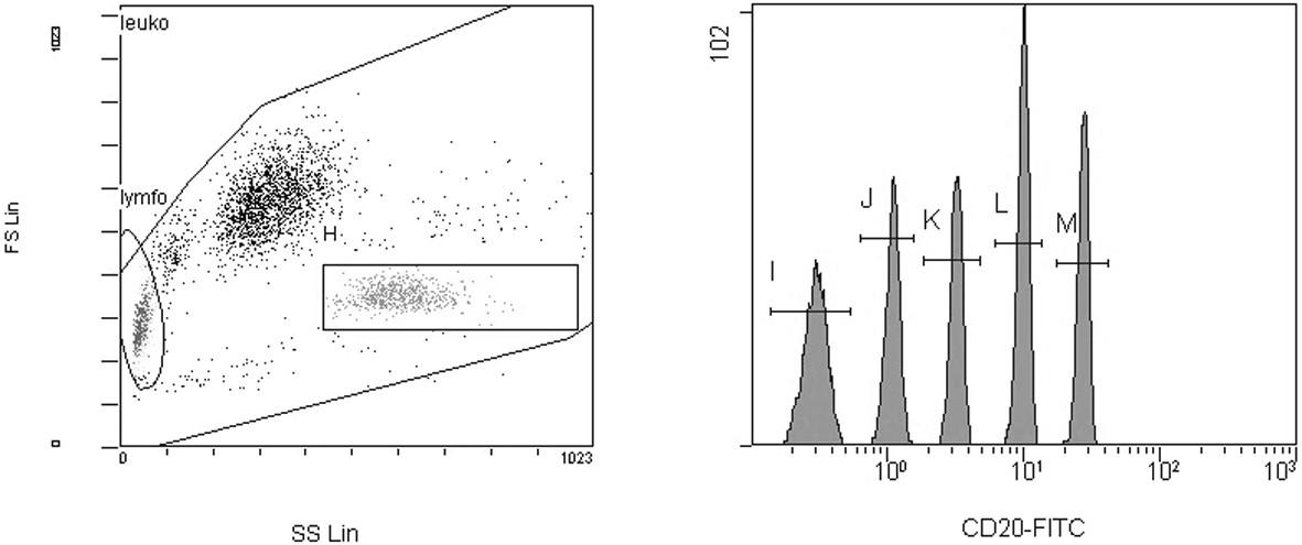 Kalibrační mikročástice na histogramech z flowcytometru. Gating mikročástic byl prováděn na histogramu forward vs. side scatter (FS/SS) (gate H). Střední hodnoty intenzity fluorescence byly měřeny na jednoparametrovém histogramu. Z hodnot intenzity fluorescence a standardizovaných hodnot v MESF jednotkách pro jednotlivé skupiny mikročástic o různé intenzitě fluorescence byla sestavena kalibrační křivka.