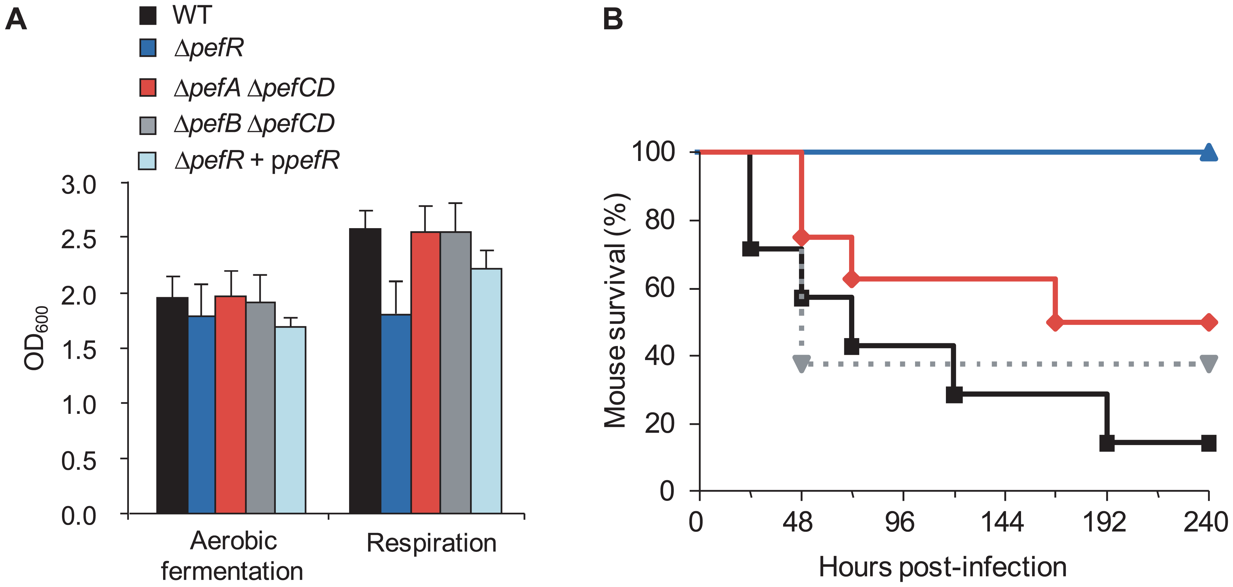 Physiological consequences of <i>pef</i> mutations.