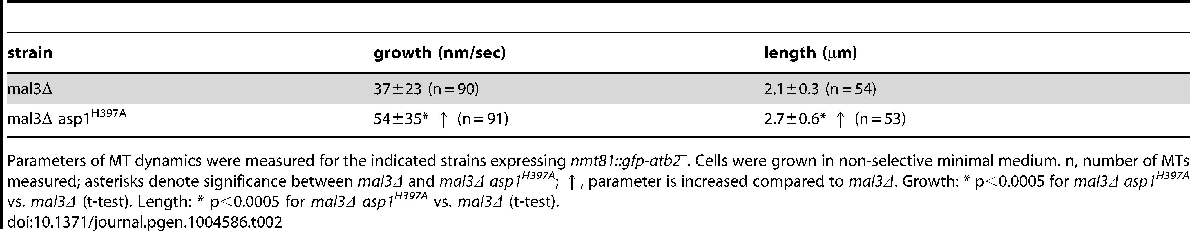 Interphase MT dynamics in <i>mal3Δ</i> variant strains.
