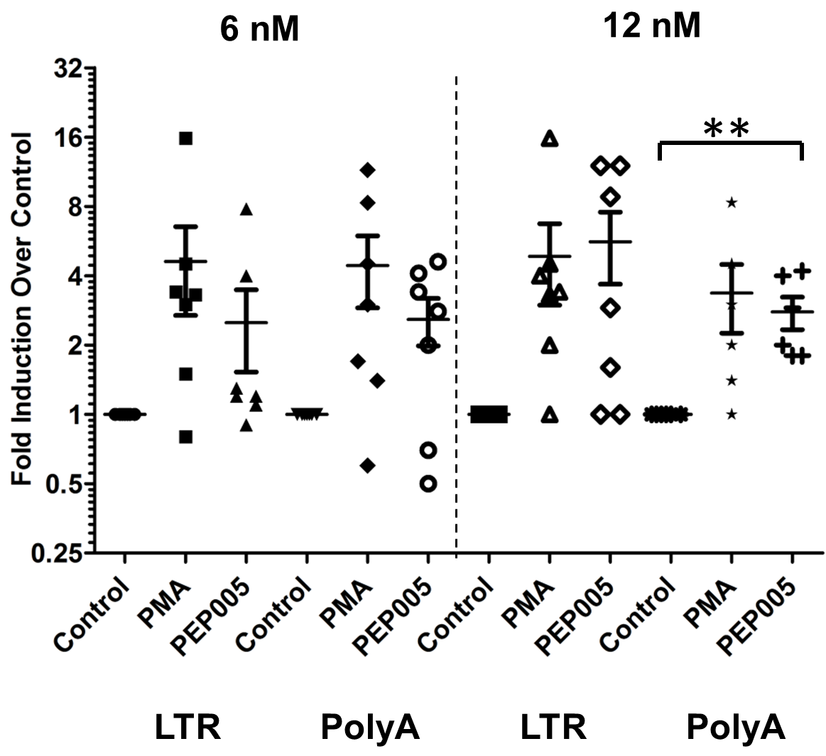 PEP005 induces full-length HIV transcripts in primary CD4+ T cells from HIV infected individuals on suppressive ART.