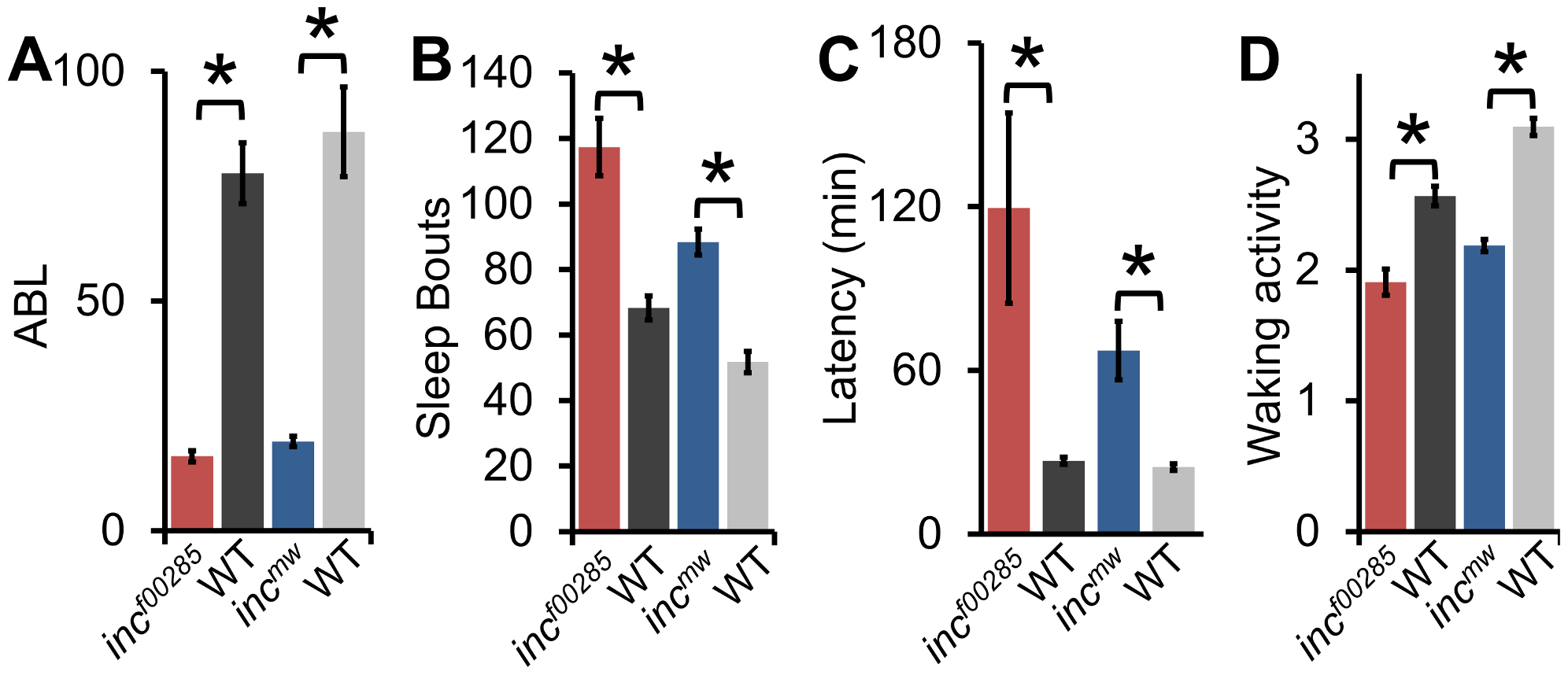 Sleep architecture is altered in <i>inc</i> mutants.