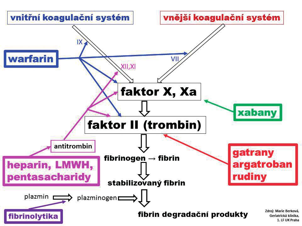 Koagulační systém a působení jednotlivých skupin antitrombotik na různých úrovních systému