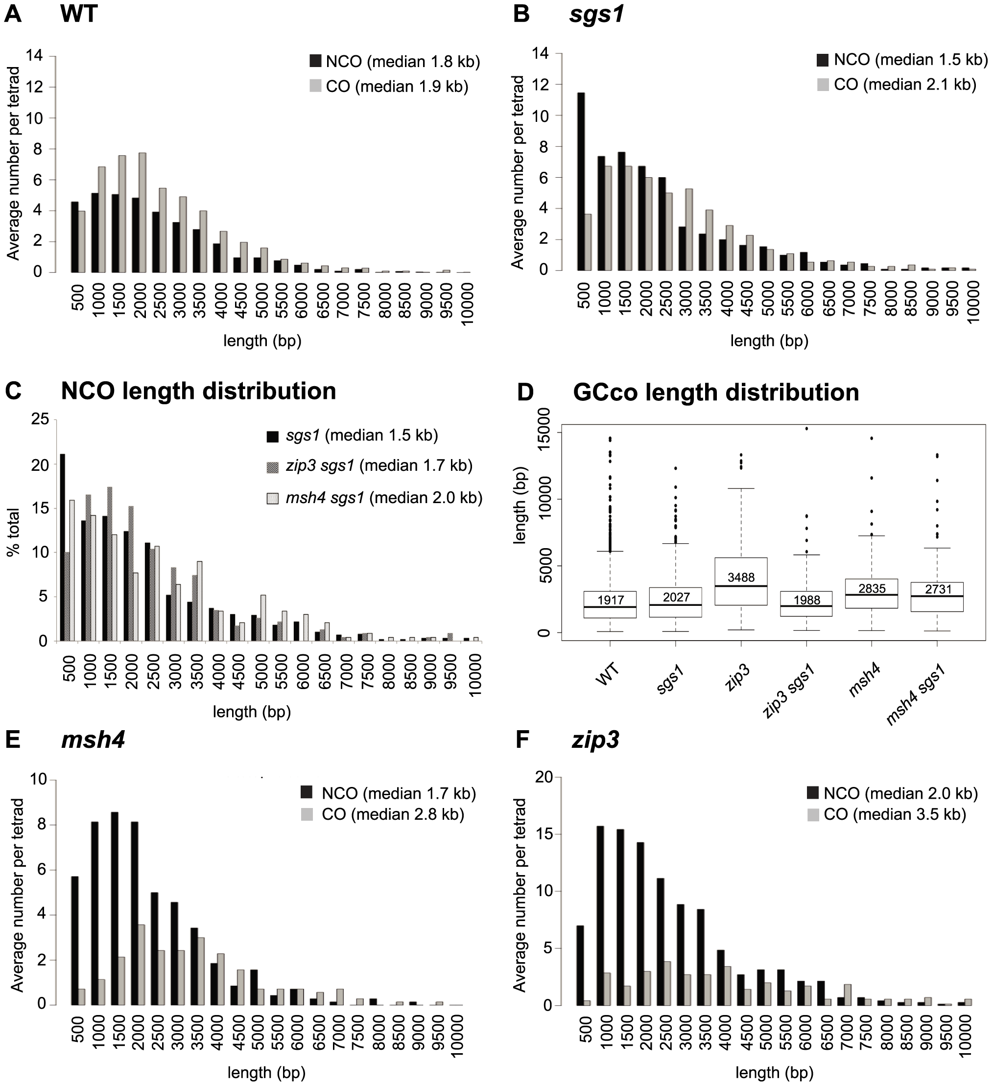 Distribution of GCco and NCO tract lengths for <i>sgs1</i> and <i>zmm</i> mutants.
