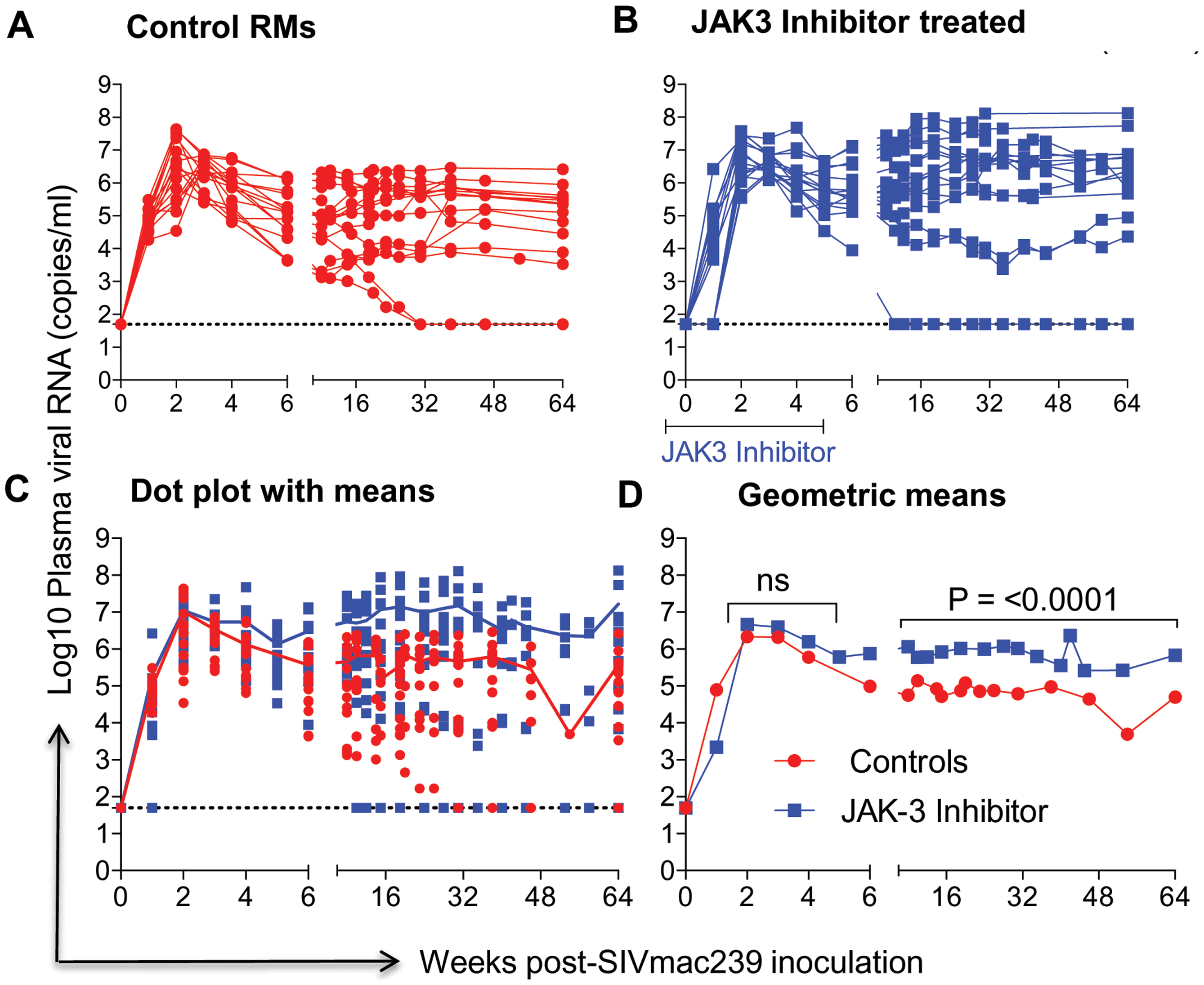 Aliquots of plasma samples from each of the 16 control monkeys and the 15 monkeys that received the JAK3 inhibitor were assayed for viral loads post SIVmac239 infection.