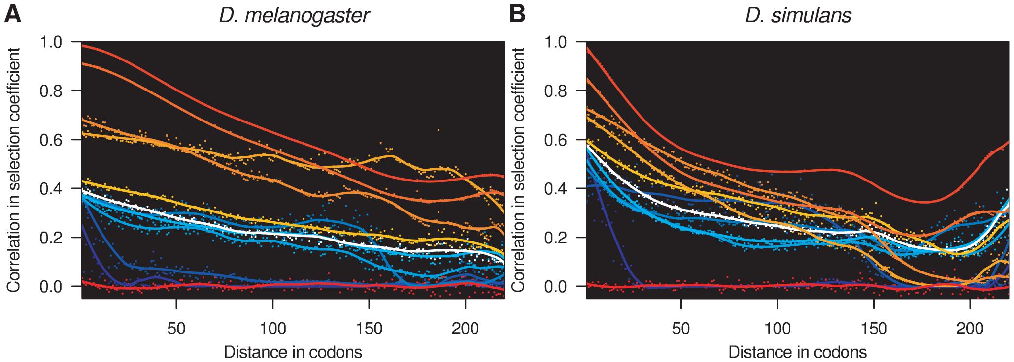 Spatial correlation in selection coefficients.