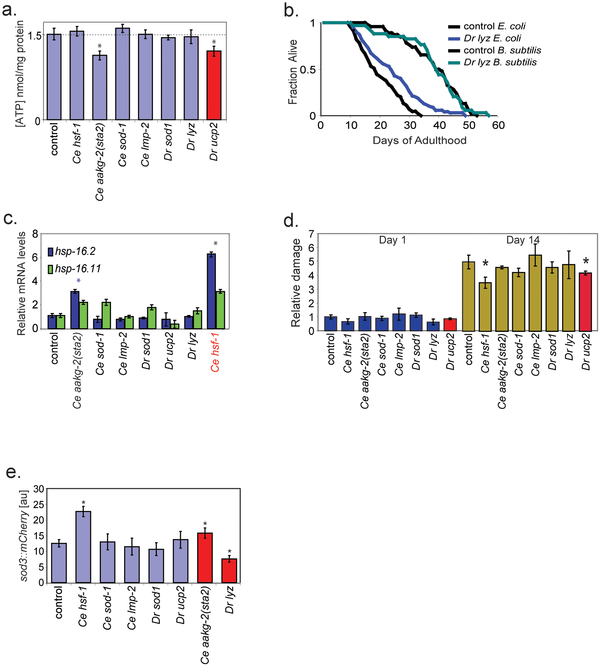 Assays showing functional activity of the aging genes.