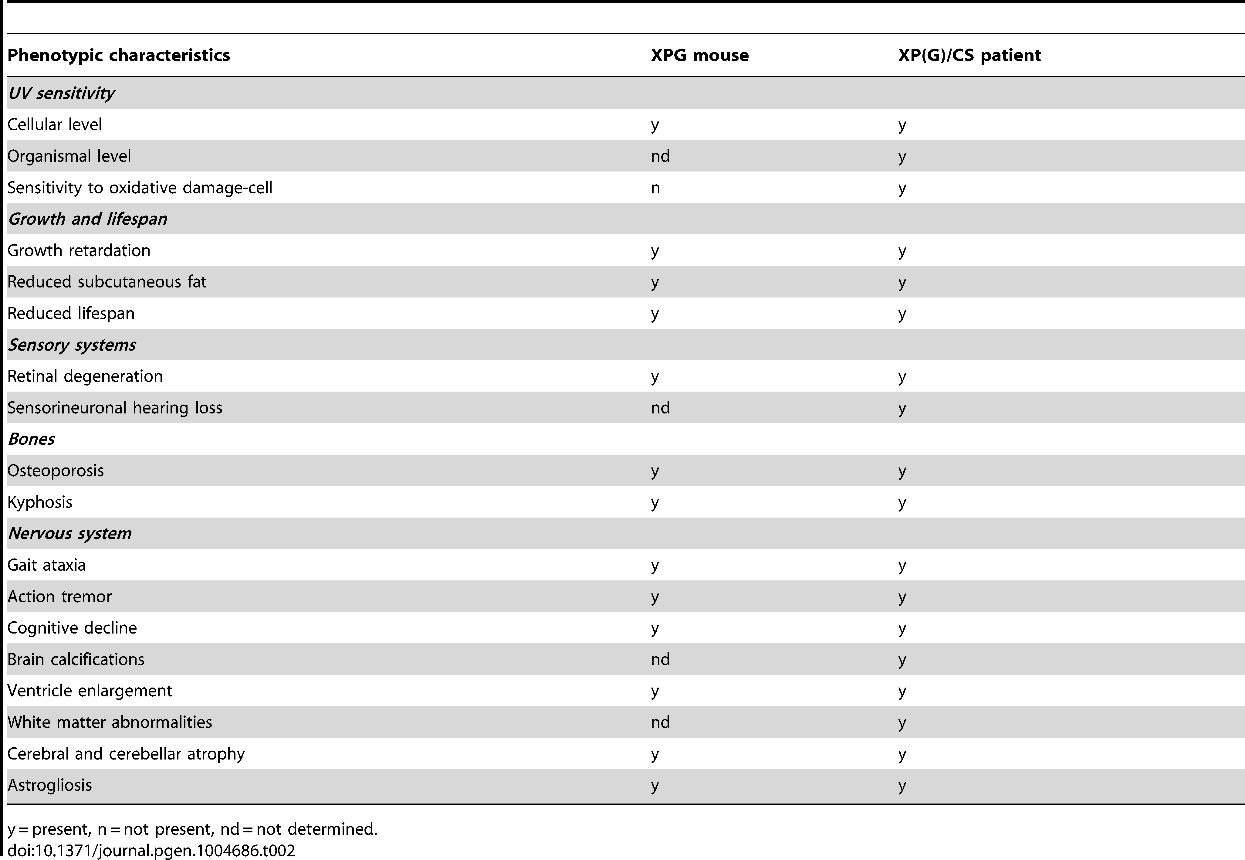 Comparison of the <i>Xpg<sup>−/−</sup></i> phenotype to that of XP/CS patients.
