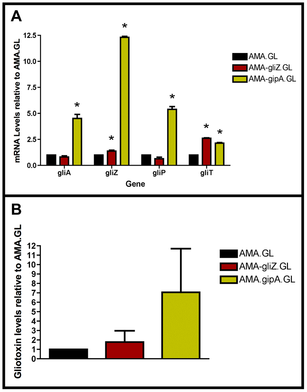 High-copy expression of <i>gipA</i> induces gliotoxin production.