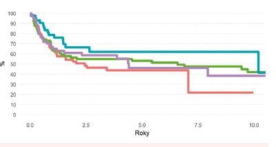 Pravděpodobnost OS pacientů s AML po HCT podle ELN rizikové skupiny