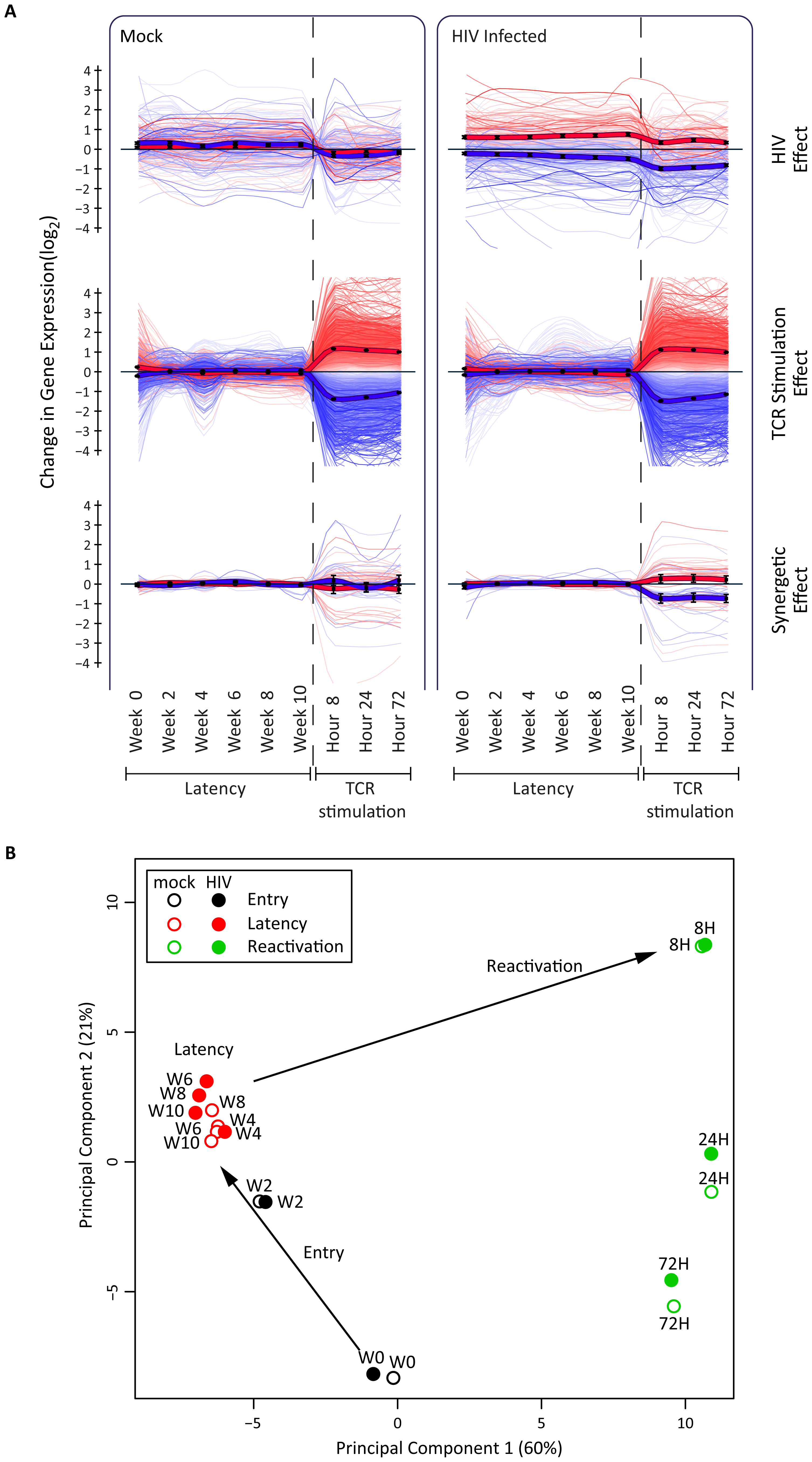 Host transcriptional response in latency and reactivation in a primary CD4+ T cell model.