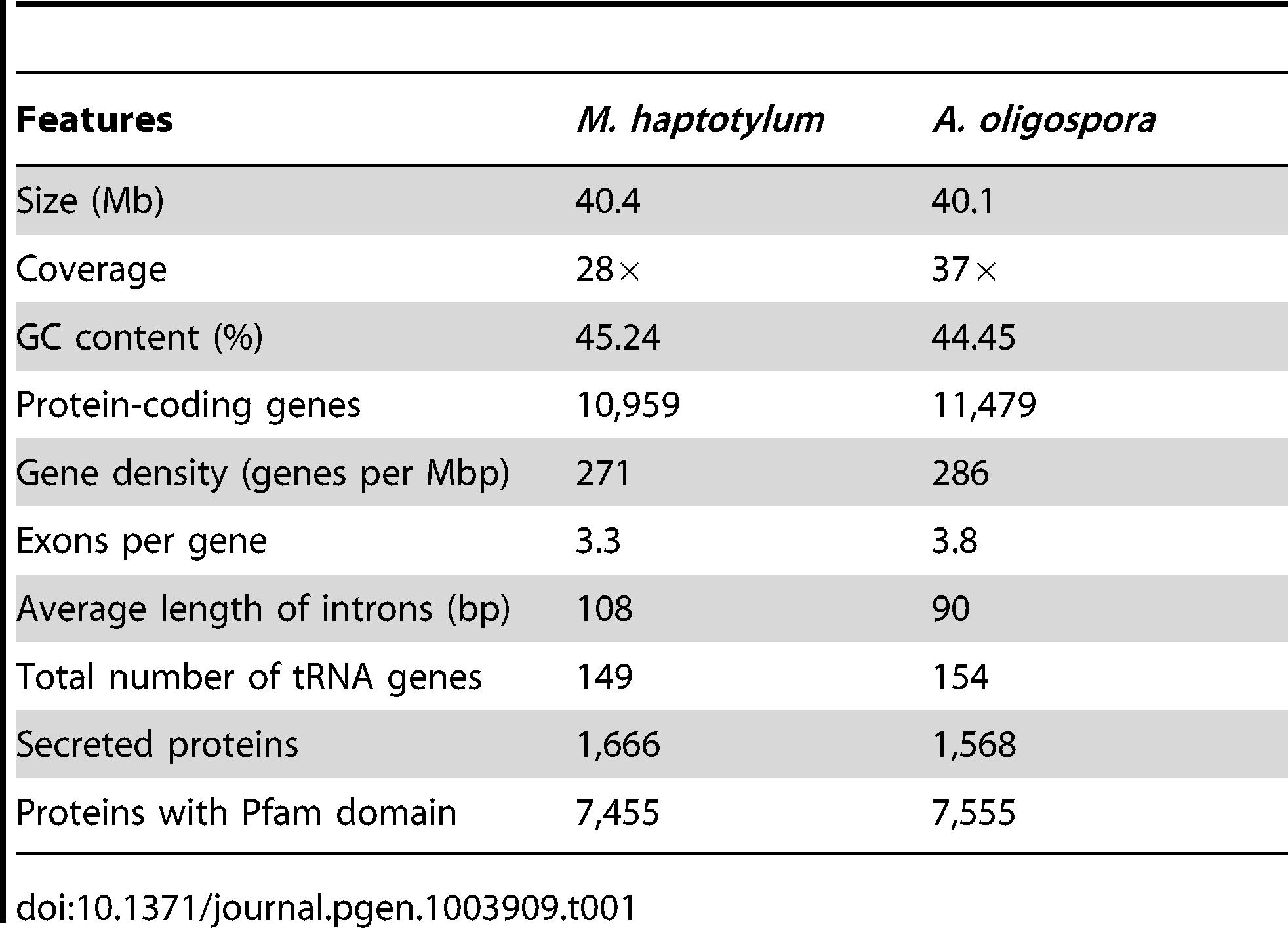 Main features of the <i>M. haptotylum</i> and <i>A. oligospora</i> genomes.