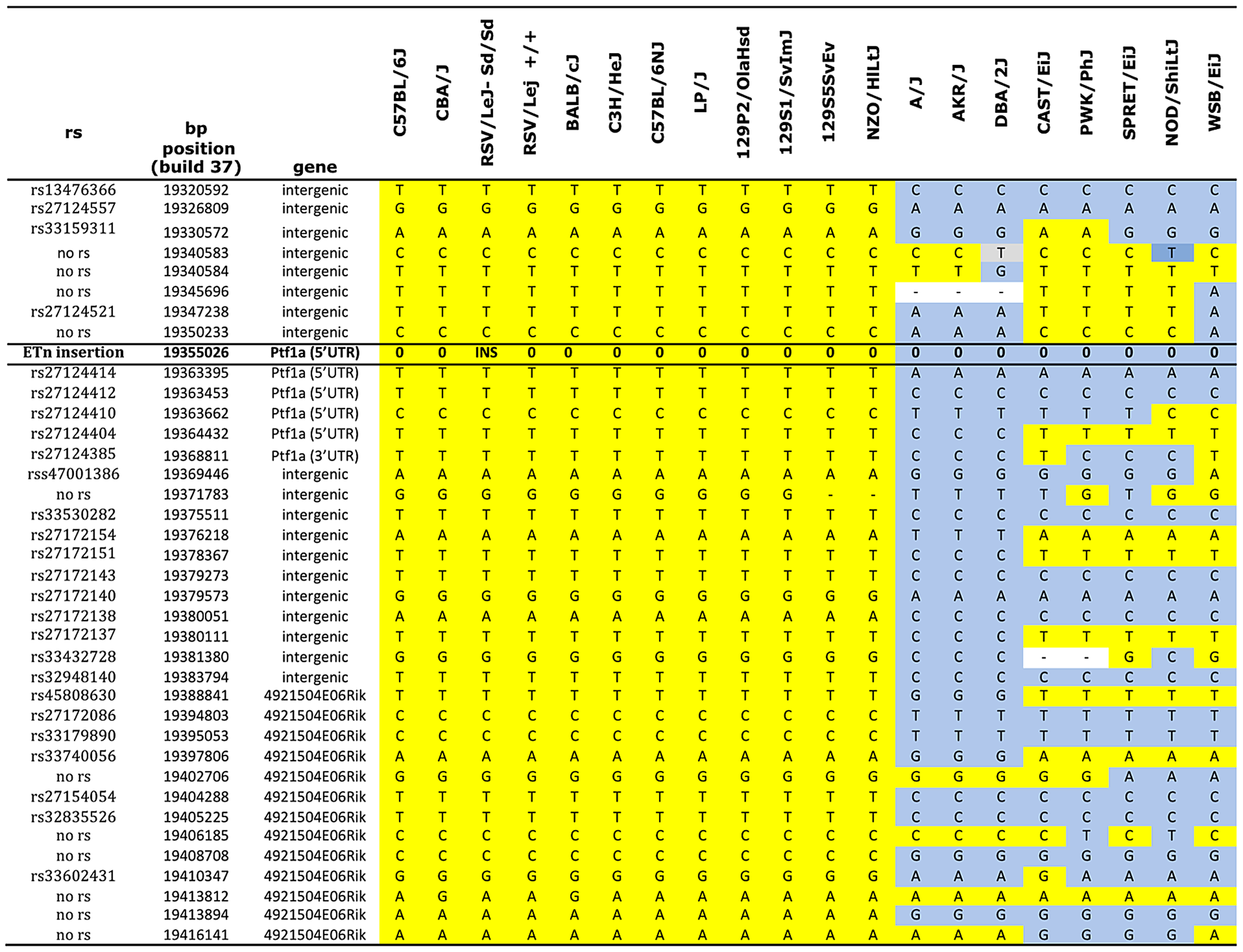 Haplotype map of the <i>Ptf1a</i> locus.