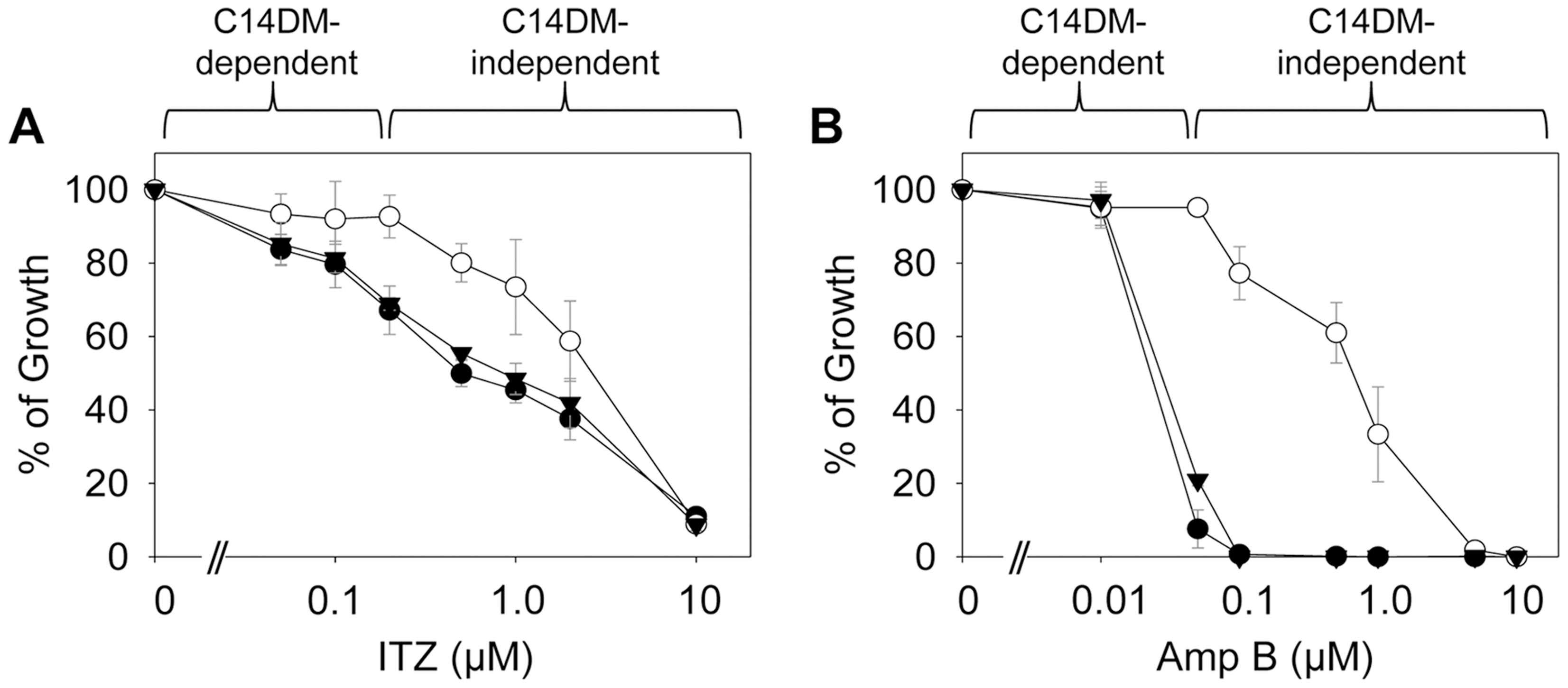 <i>C14dm</i><sup>−</sup> mutants are more resistant to ergosterol synthesis inhibitors.