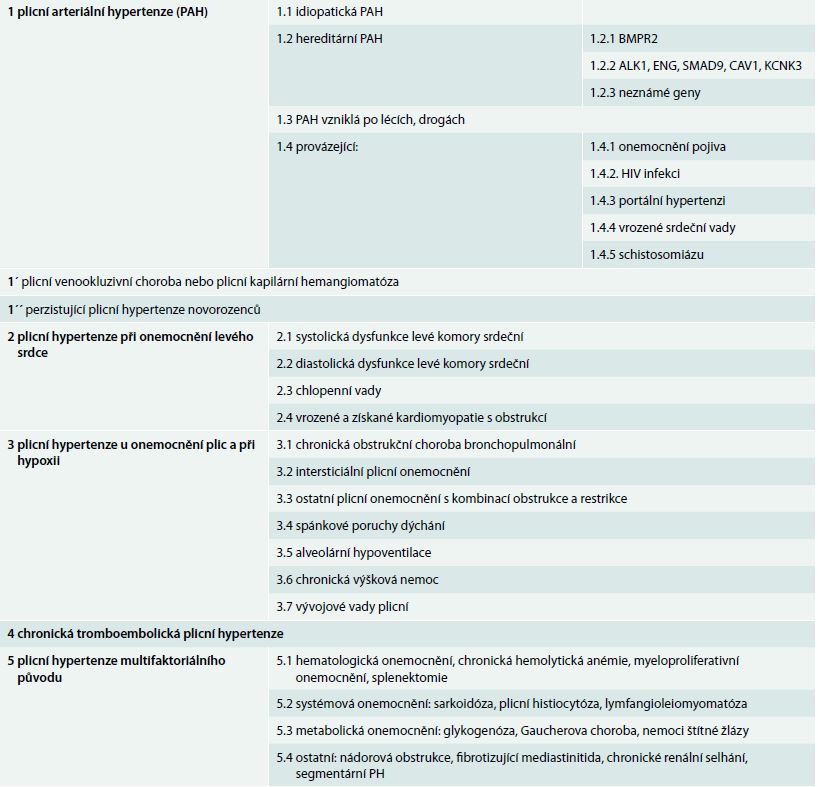 Revidovaná nomenklatura a klasifikace plicní arteriální hypertenze (Nice, 2013)