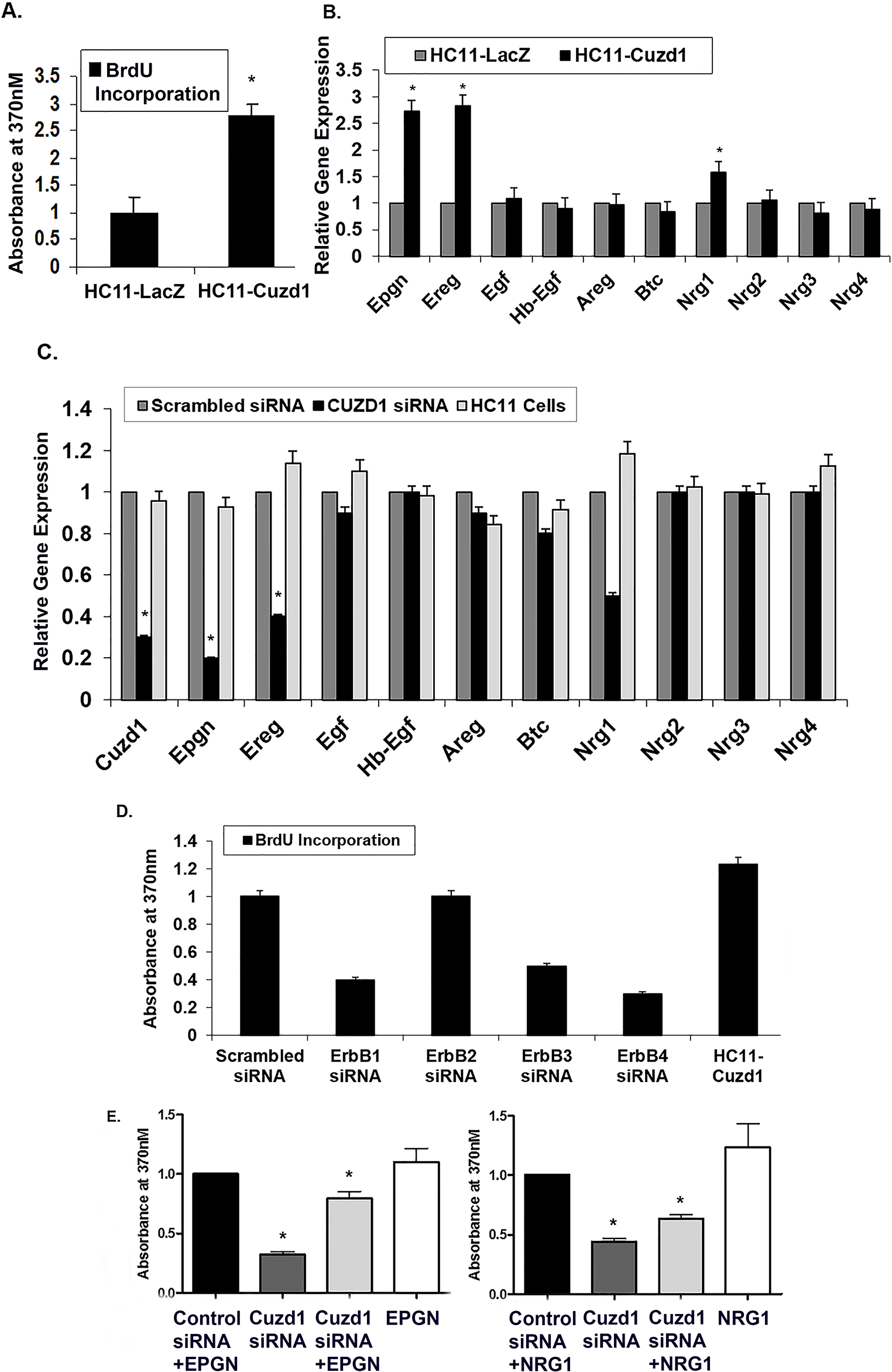<i>Cuzd1</i> controls the expression of a subset of EGF family ligands in mammary epithelial cells.