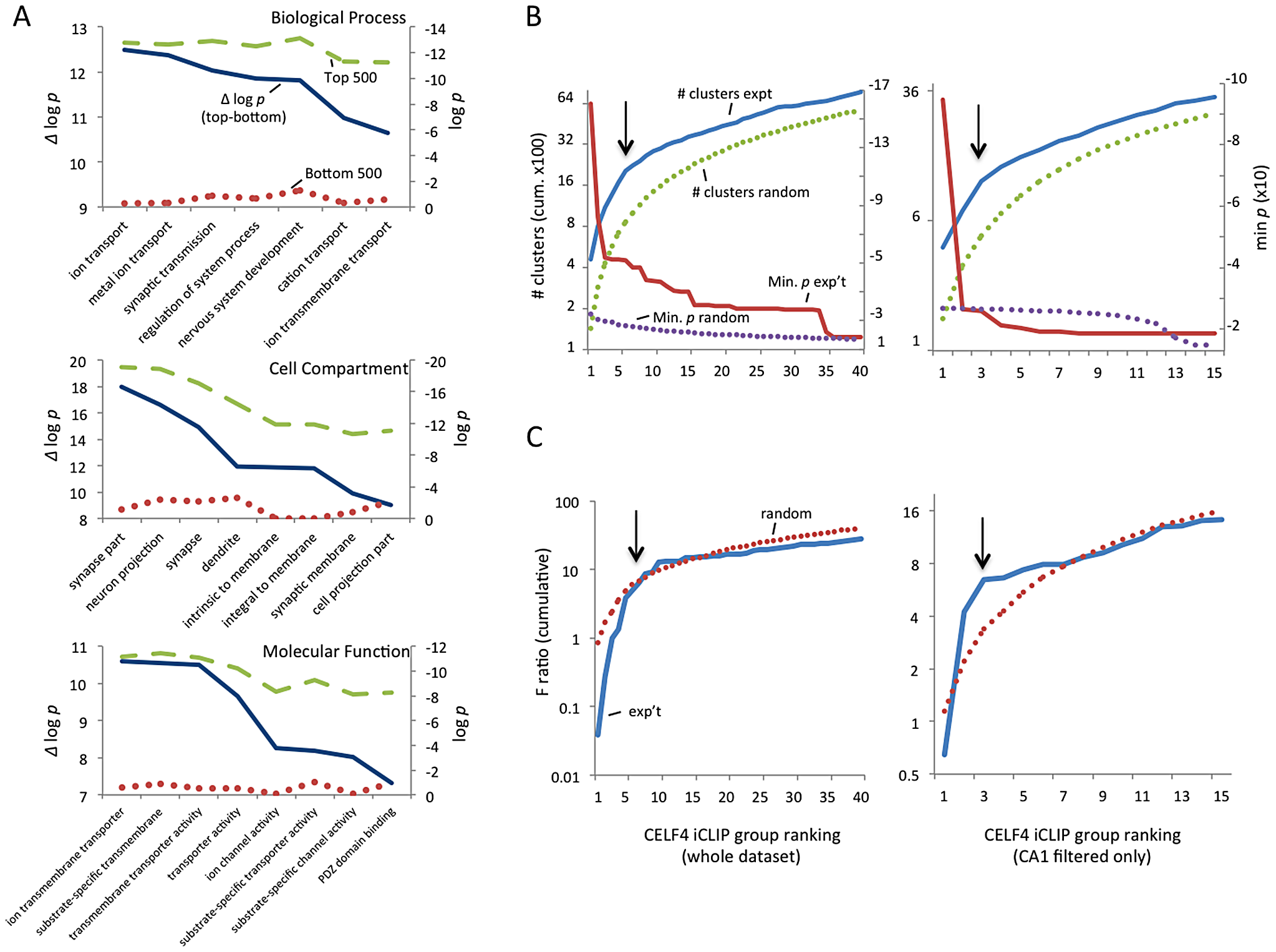 Functional annotation clustering of CELF4 mRNA targets and estimating CELF4 target binding threshold.