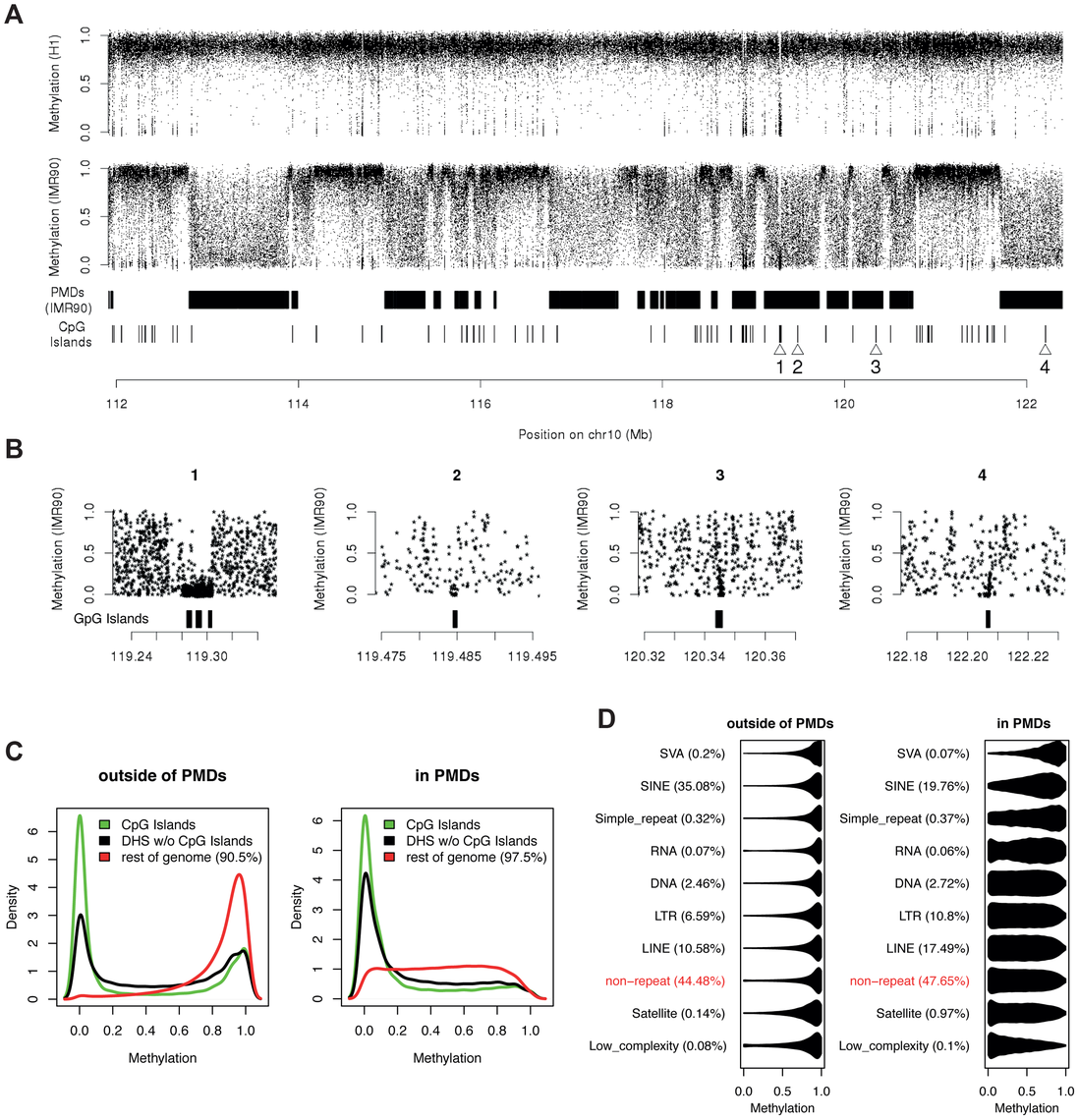 CpG methylation levels in PMDs are highly variable along the genome.