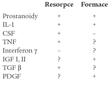 Lokální faktory ovlivňující kostní resorpci či formaci (upraveno dle Stevensona aMarshe).