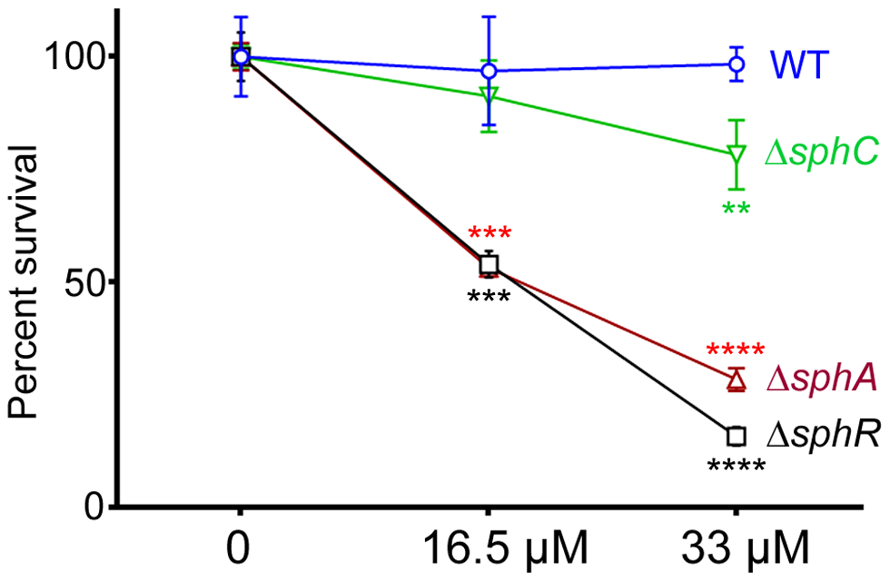 Deletion of <i>sphA</i> or <i>sphR</i> renders <i>P. aeruginosa</i> susceptible to killing by sphingosine.