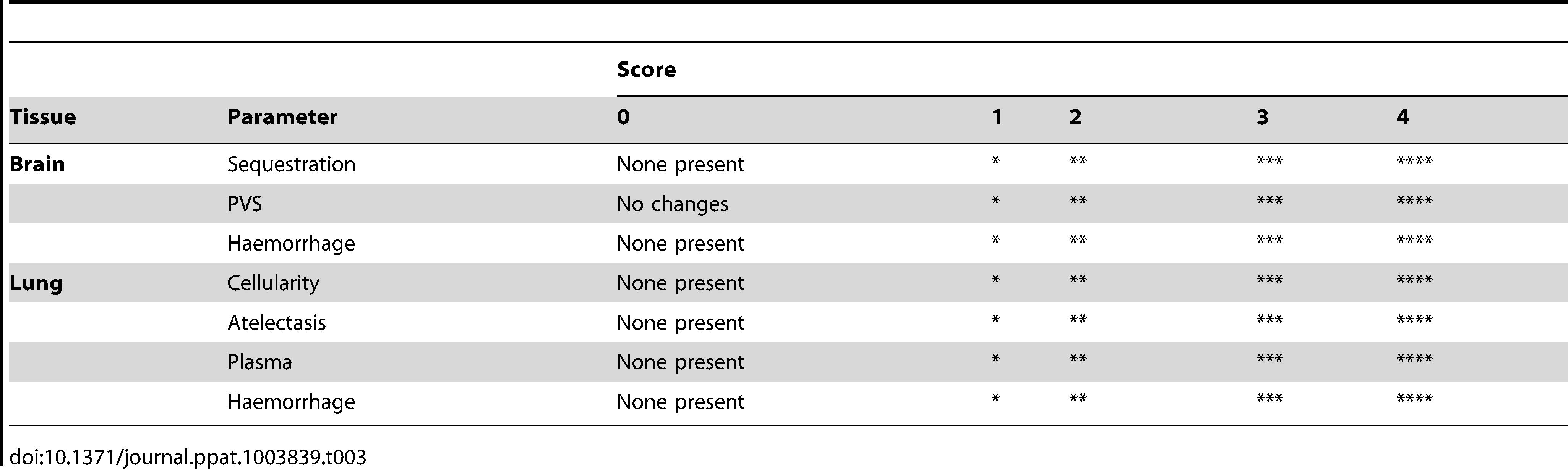 The qualitative histopathological scoring of the tissue.