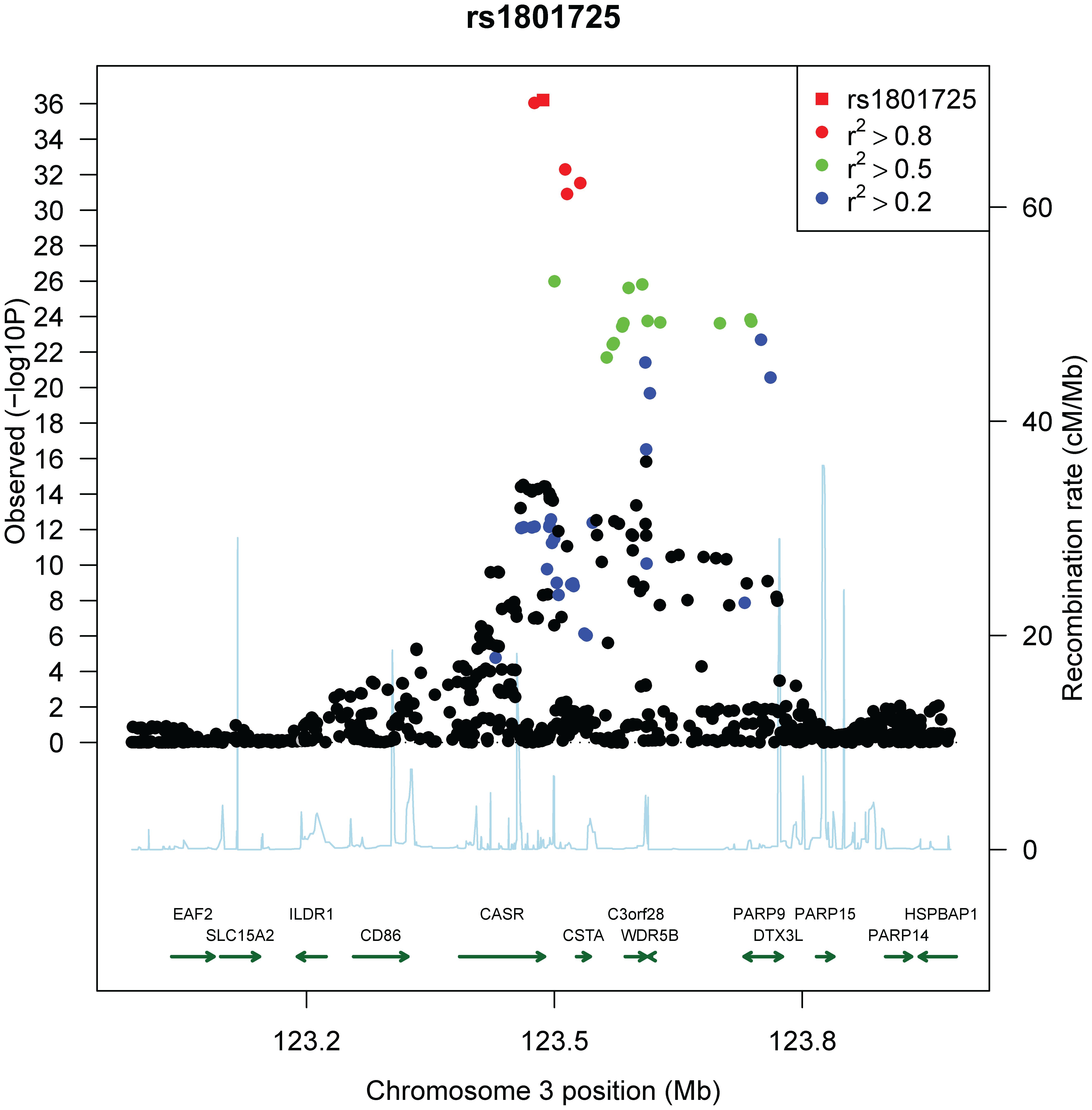 Regional association plot of the <i>CASR</i> locus.