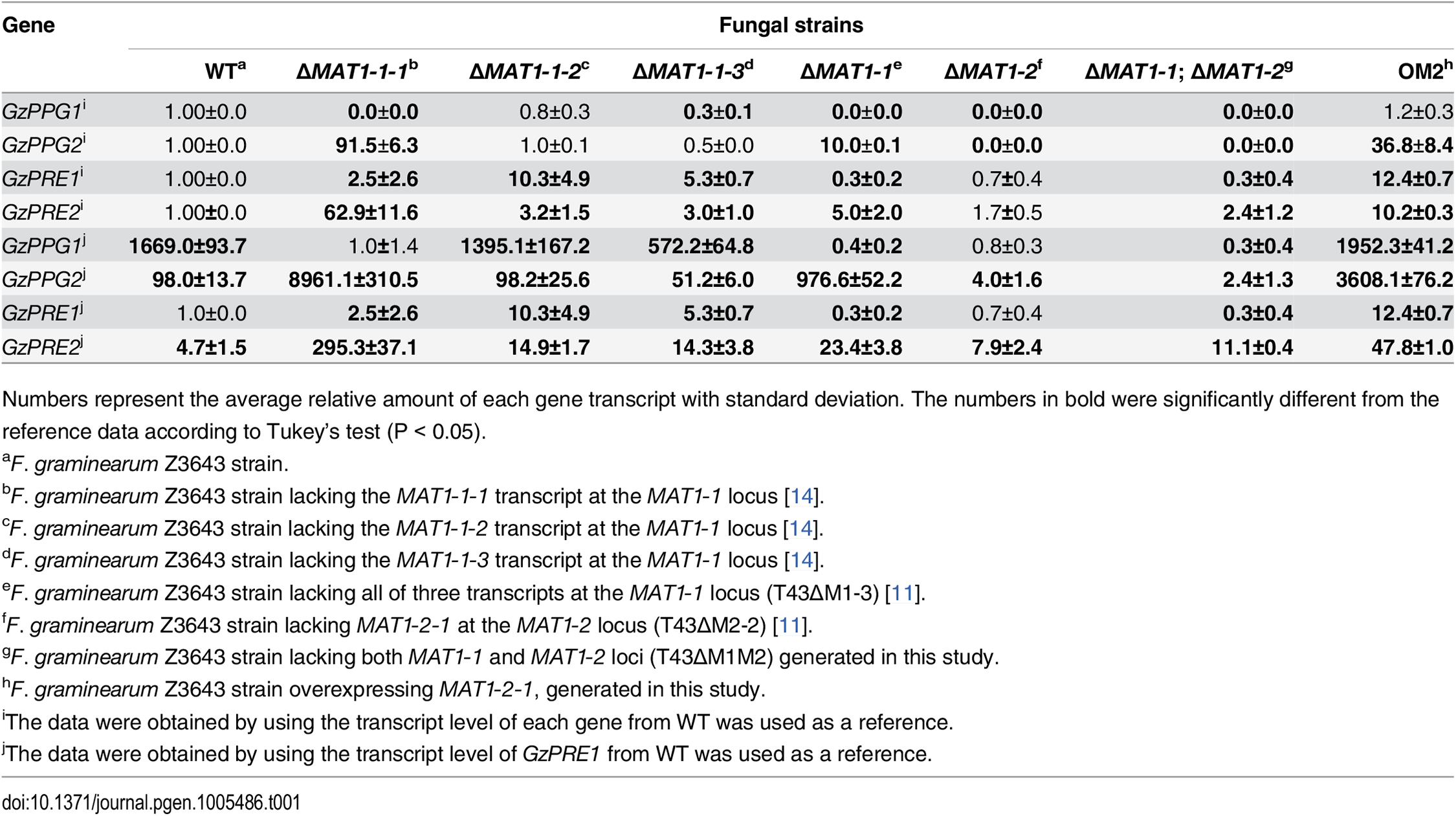 Relative transcript levels of genes for pheromone precursors and receptors accumulated in the <i>MAT-</i>deletion- and <i>MAT1-2-1-</i>overexprssing-strains of <i>F</i>. <i>graminearum</i> under perithecial induction stage.