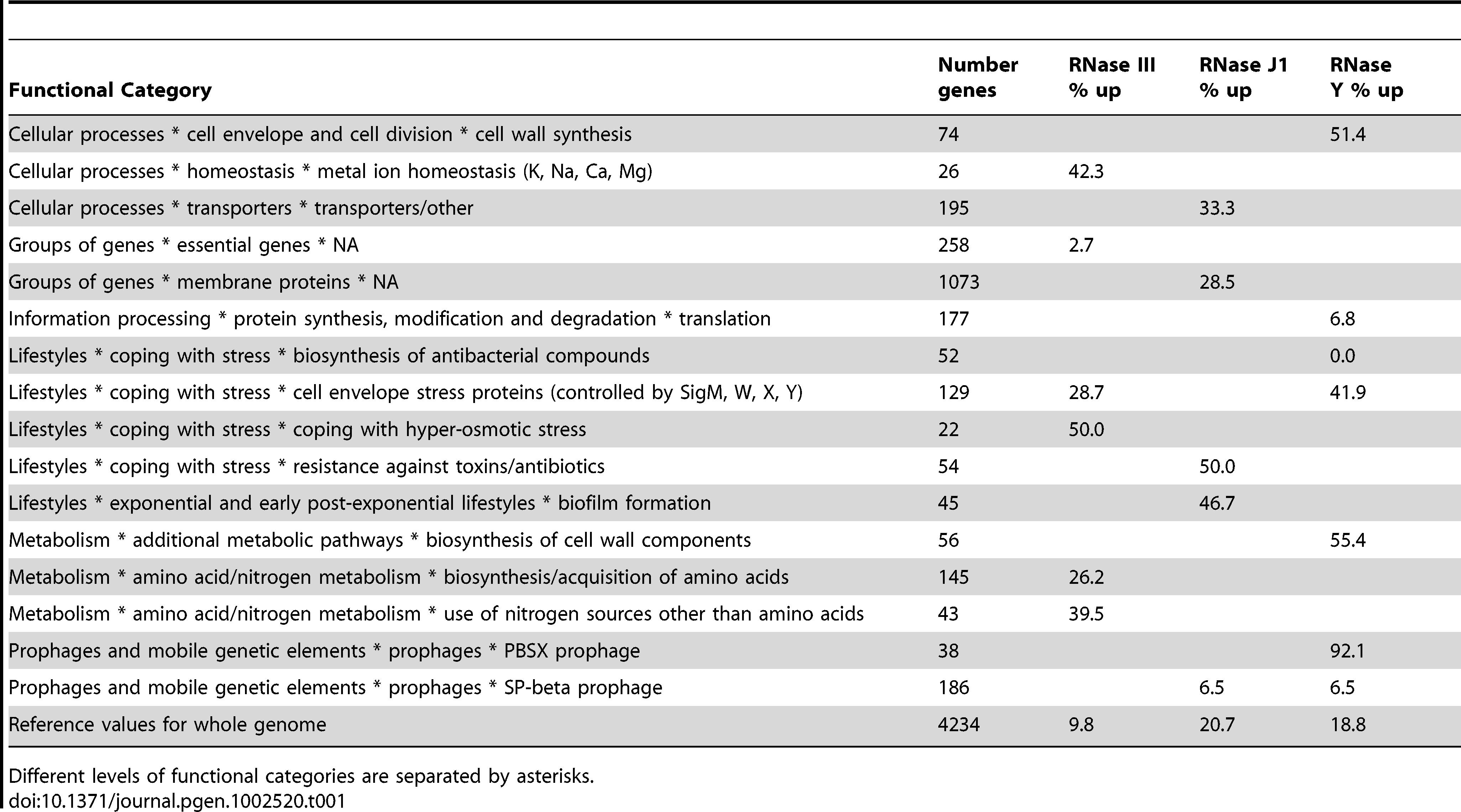 Functional categories of mRNAs stabilised in RNase III, J1, and Y mutants.
