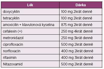 Přehled antibiotické léčby pro použití u syndromu bakteriálního přerůstání v tenkém střevě