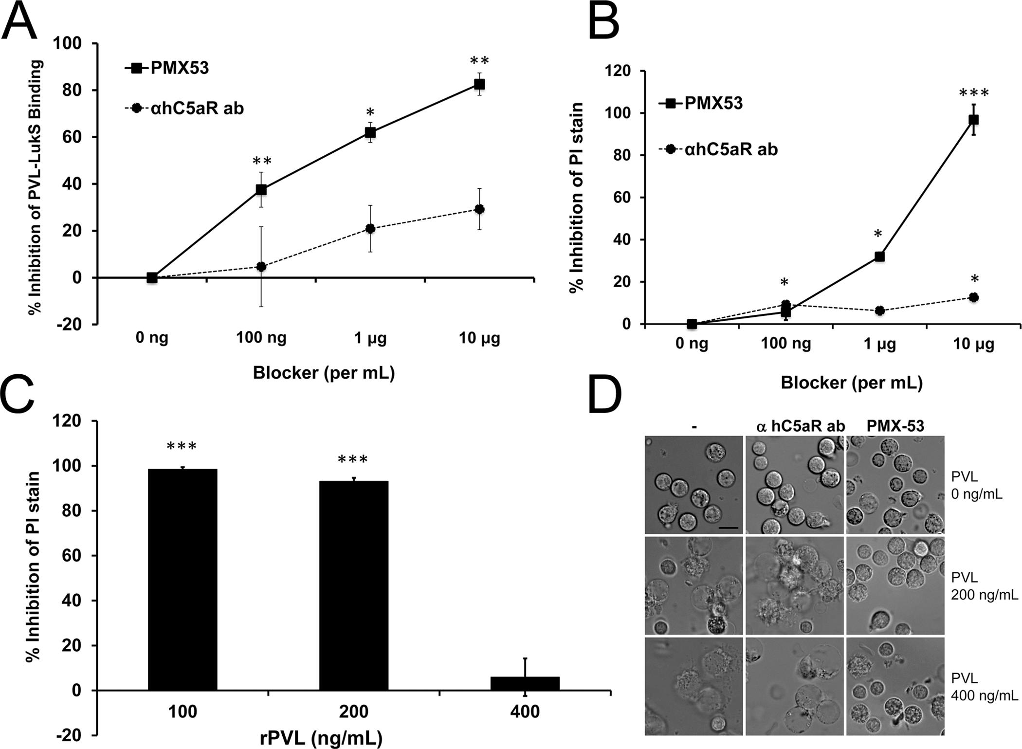 PMX53 inhibits PVL-mediated pore formation and cytotoxicity <i>in vitro</i>.