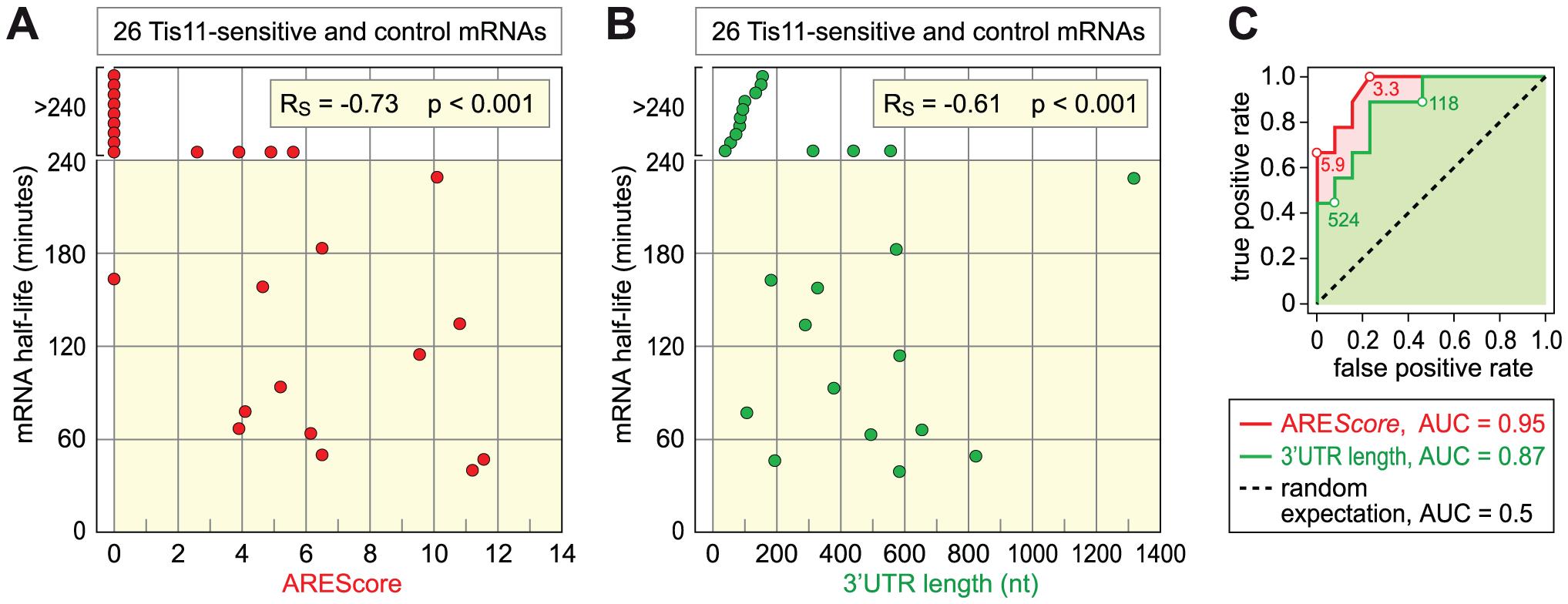 Relationship among ARE<i>Score</i>, 3′UTR length, and mRNA half-lives.