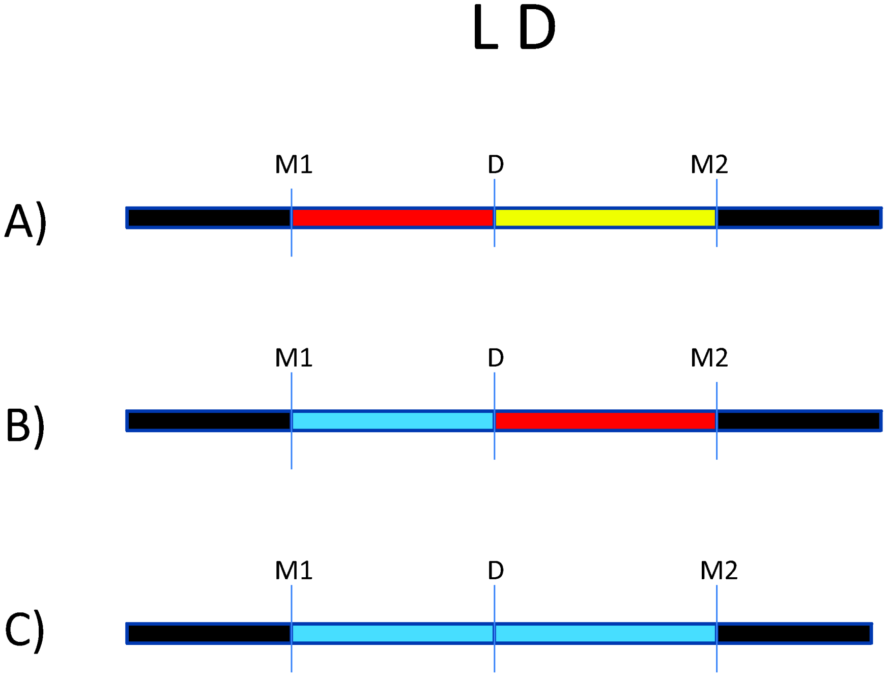 Impact of variation in linkage disequilibrium (LD) in detection of disease risk alleles.