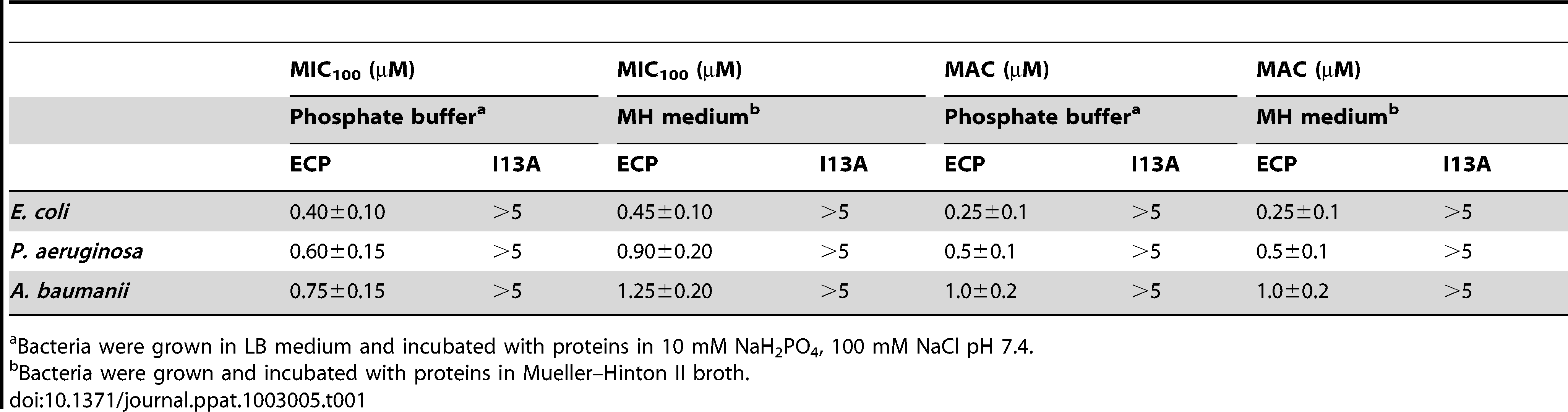 Antimicrobial (MIC<sub>100</sub>) and agglutinating (MAC) activities of wtECP and I13A mutant in Gram-negative strains.