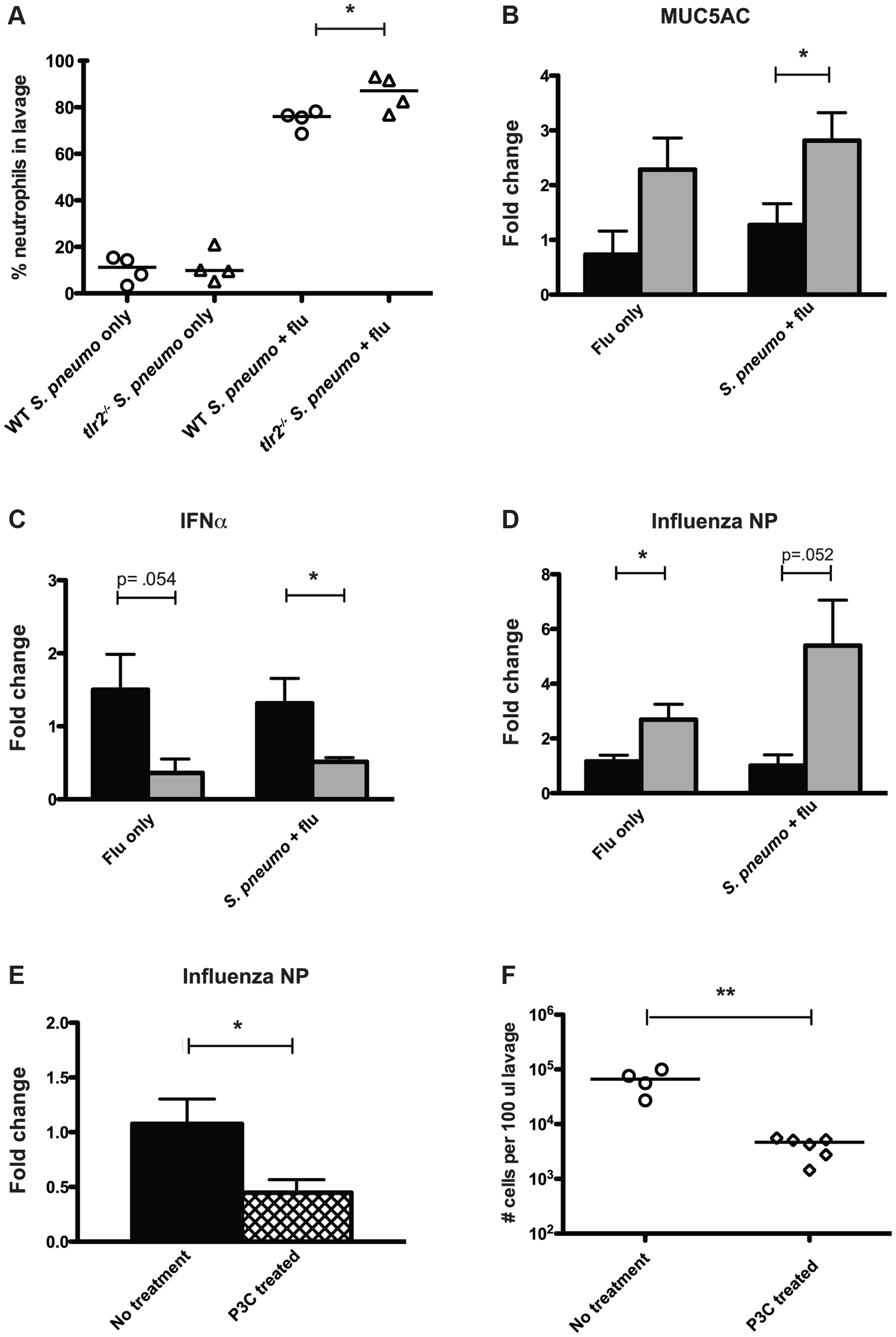 Mice deficient in TLR2 display increased inflammation and increased viral titers following influenza infection.