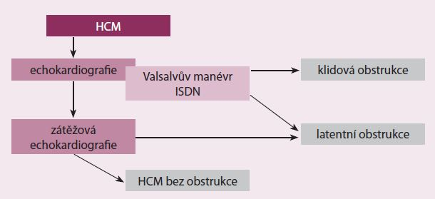 Algoritmus vyšetřování obstrukce u pacientů s HCM ve FN v Motole.