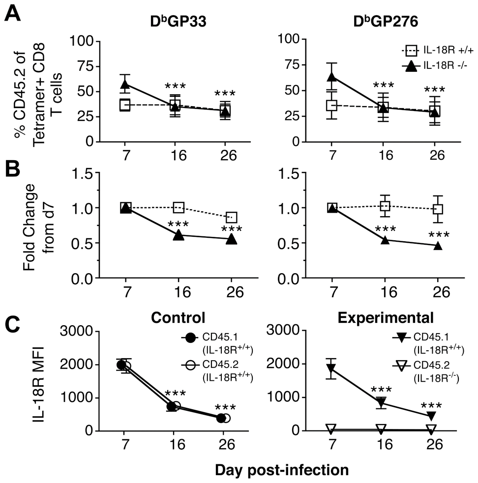 LCMV-specific IL-18Rα<sup>-/-</sup> CD8 T cells are preferentially lost from day 7-16 following cl13 infection.