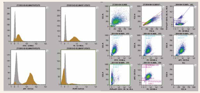 Figure 1 | Characterization of ADMSCs by flow cytometry. ADMSCs were positive for markers CD90, CD105, CD73 and negative for markers CD14, CD20, CD34 and CD45