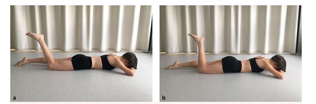Prone knee bend test